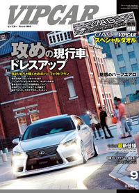 VIP CAR 2013 vol.210